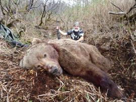 Chuck Dawson Spring Brown Bear.jpg 9' 8_
