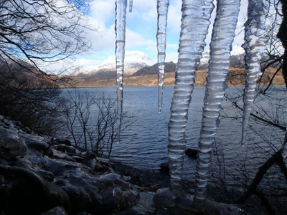 Icicles overlooking the bay.jpg