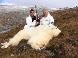 Dave Flum's billy mountain goat.jpg
