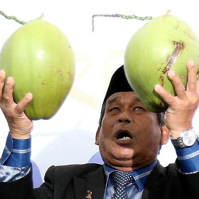 coconnut.jpg