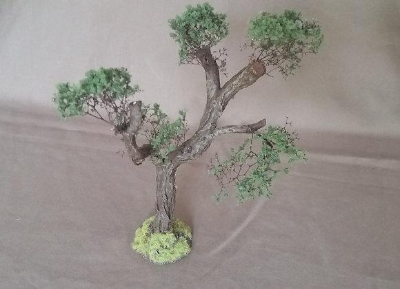 "Pack 1 ""arbre"""