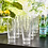 Thumbnail: Palmetto 20-ounce Tumblers | set of 16 Clear