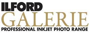 I-Galerie_Logo_BLACK.jpg
