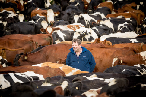 Michael Green of Waikato Farm, Mt Schank SA.