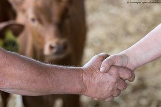 Cooperation between red breeds