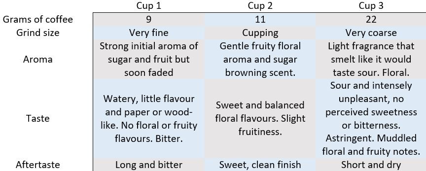 coffee cupping extraction taste results