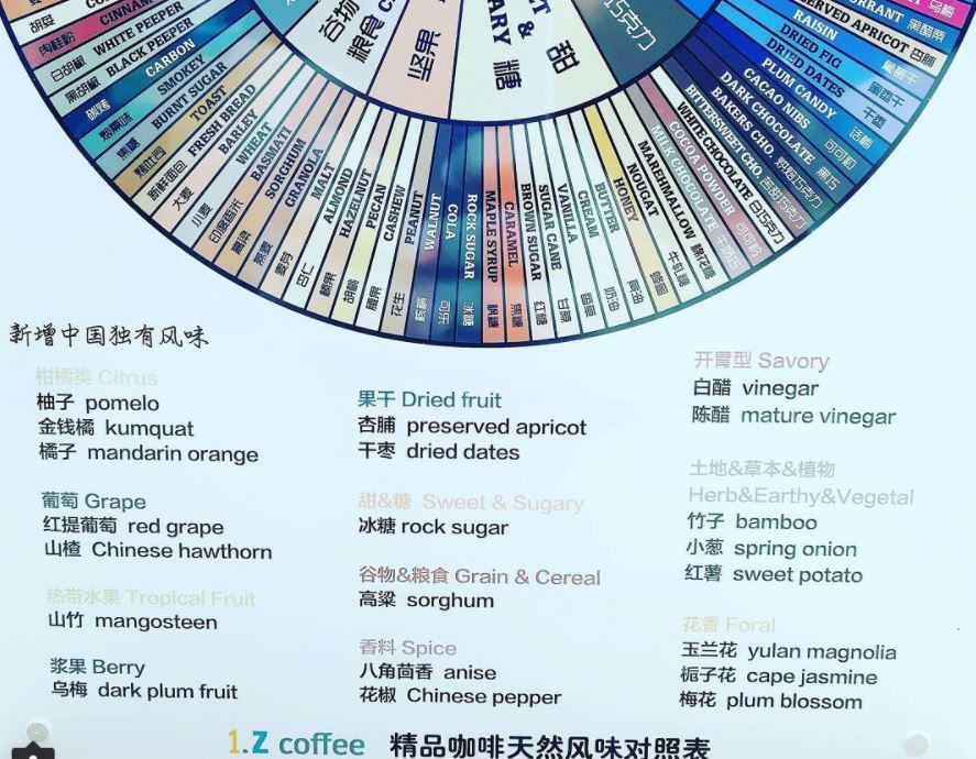 Chinese coffee flavour wheel