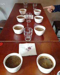 Cupping table of rwandan coffee