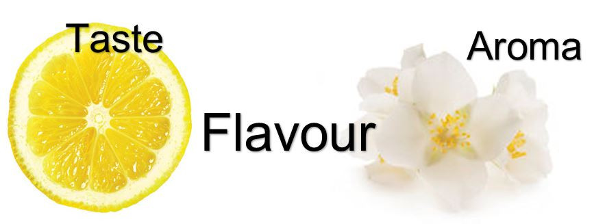 coffee taste and flavour compounds