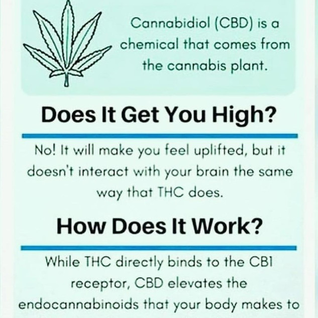 cbd what is.jpg