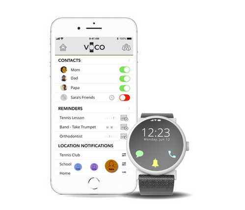 Voco and companion app