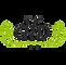 DFP_logo.webp