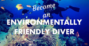 Environmental friendly diving PRACTICES