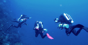 Diving is safe! 7 tips for avoiding accidents