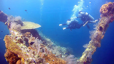 dive try discover diving scuba dsd today water not have after feel time underwater like life use open many days