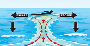 WHAT YOU NEED TO KNOW ABOUT Currents AS A DIVER
