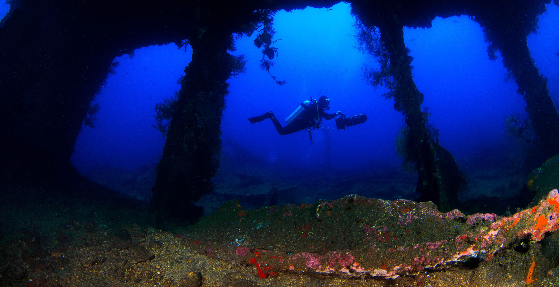 Dive the Liberty Wreck
