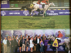 Tapitsfly Breeders' Cup 2009