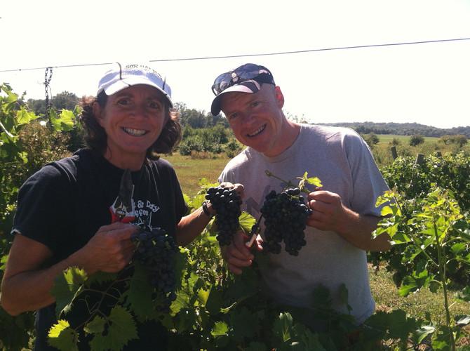 Cream Ridge Winery Going Permaculture!