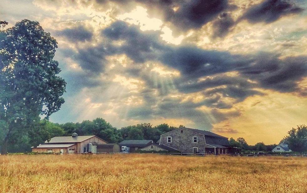 Mark Krajanak Photo.jpeg