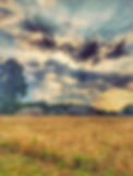 Mark Krajanak Landscape Photo.jpg