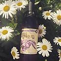Plum Wine (Return in FALL)