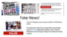 FakeNewsAssemblyScreenshot.PNG