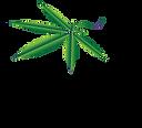 ncc-logo_176x160.png