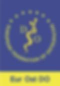 European federation of ostéopathie Diane Hissung