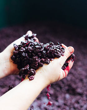 Glenarty-wine.jpg