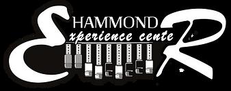 Logo HEC Hammond met H.png