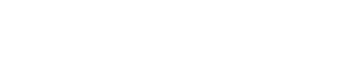 Avid Logo Web.png