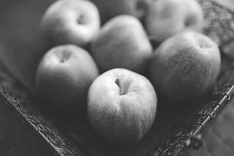 apple%20art_edited.jpg