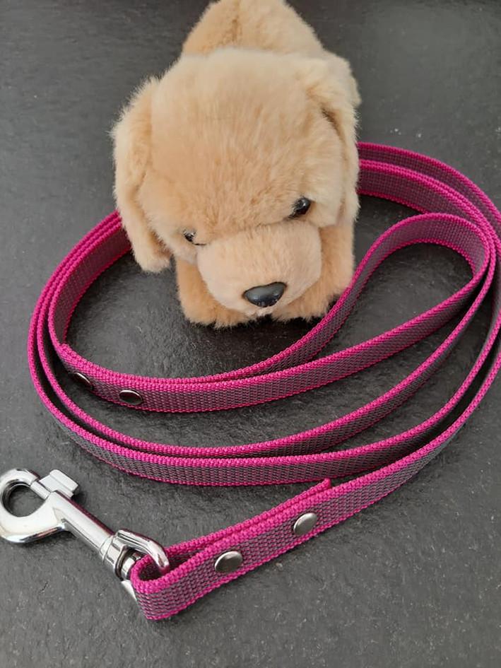 Hundeleine Himbeere.jpg