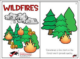 wild fire evacuation story