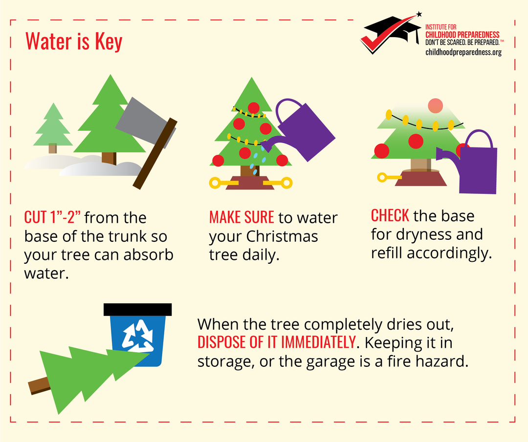 Water is Key Christmas Tree Maintenance