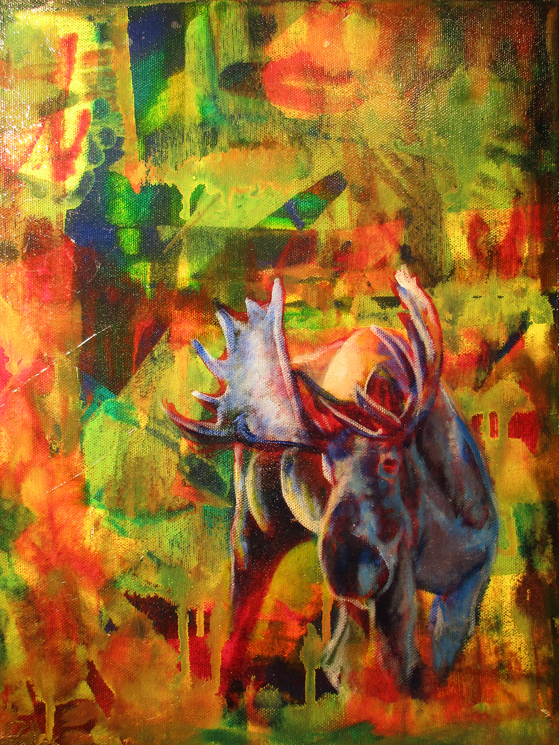 BULL MOOSE IN AUTUMN_11X14
