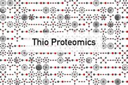 Thio Proteomics