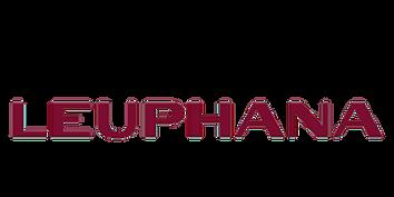 Leuphana Logo Transparent.png