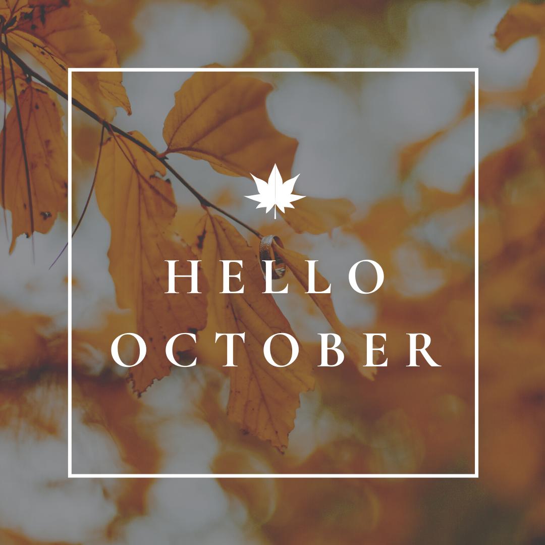 Welcoming Autumn Instagram Post