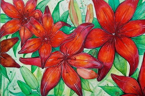 Lillian's Lilies