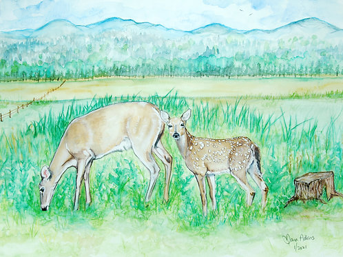 Doe & Her Fawn