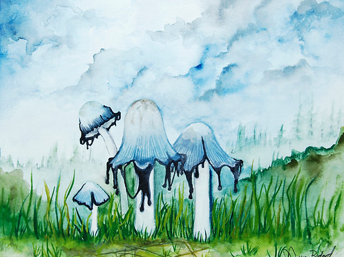 Inky Cap Mushrooms