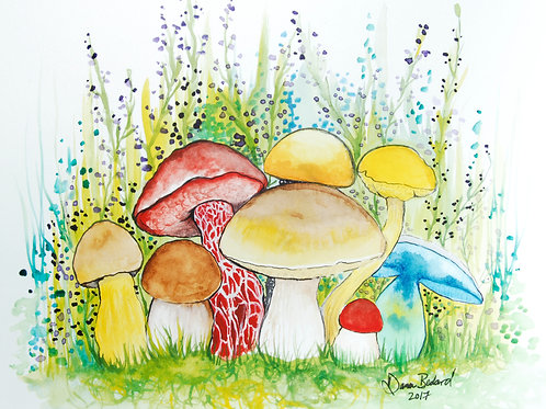 Colorful Boletes