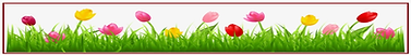 F;pwers - tulips.png