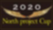 2020_npc.png
