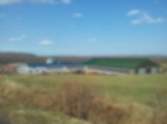 牧場風景2.jpg