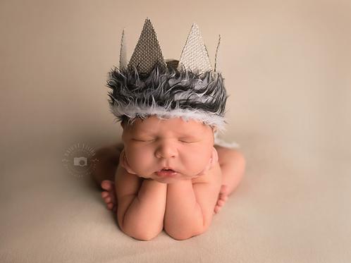 Maternity/Newborn Session Fee
