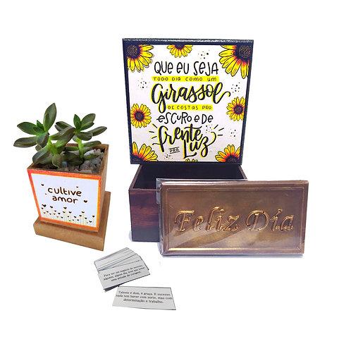 Caixa com Mensagens Positivas + Vasinho Suculenta + Chocolates