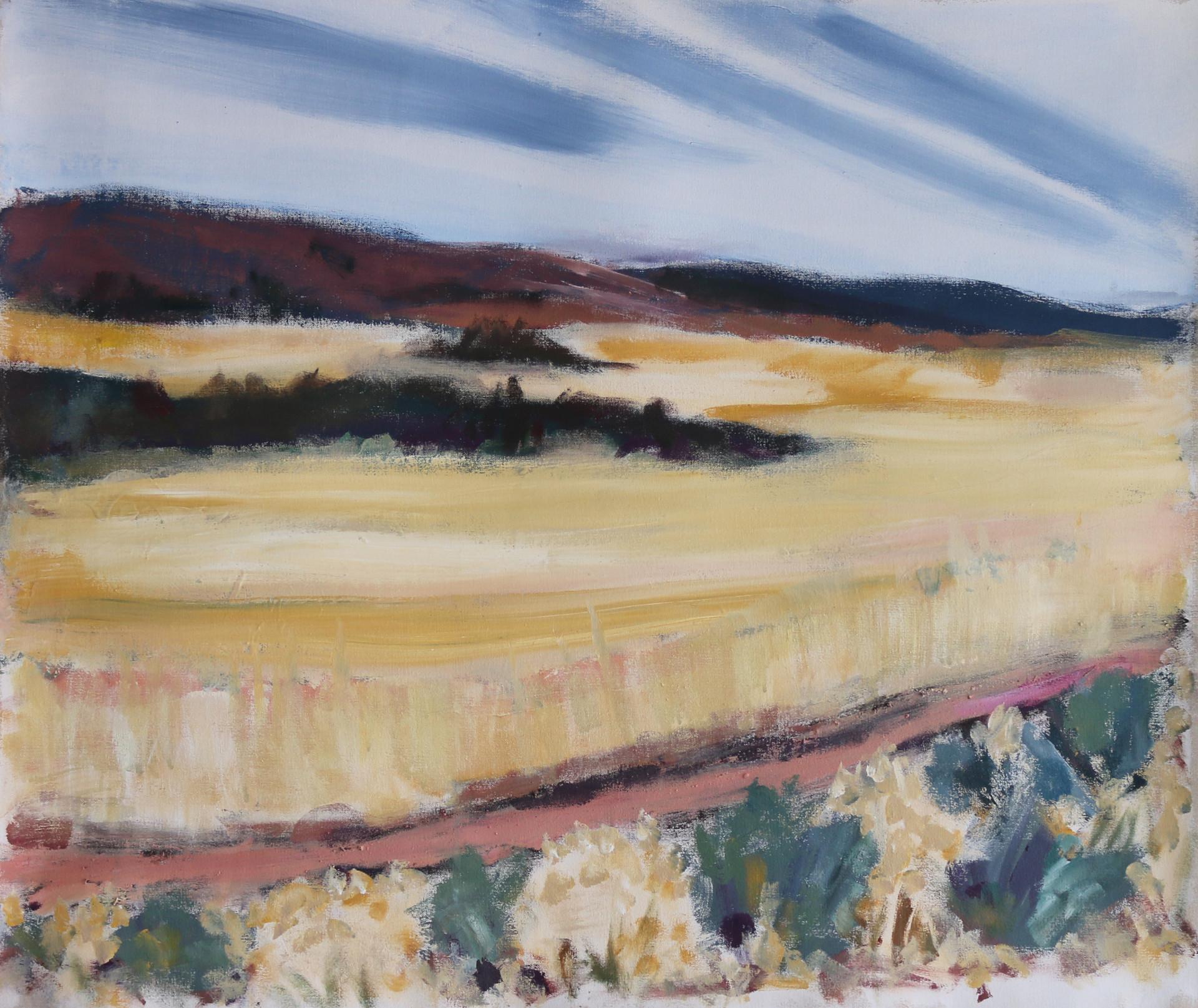 Prairie Layers